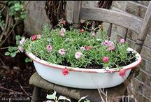 Garden Embellishments / beautiful touches for a garden