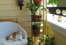 Home | BALCONY / il balcone!