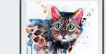 All about Cats / All about Cats, Everything you can imagine with a cat, it is on this board!