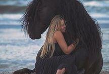 Koně / The KFPS Royal Friesian Horse-  Check out this video from youtube! For all horse lovers.  Podívejte se na toto video z you tube! Pro všechny milovníky koní