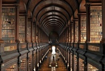 Books and Libraries / by Derek M Design