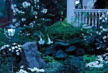 moon garden♥