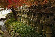 Japan / by Hiromi Matsuda