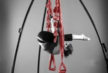 Swing Workouts / Flying Fitness, Swing Yoga, Inversion Therapy, Suspension Back/Neck Care, Strength Training. Do it all!