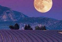 """Reisen // Frankreich / """"Leben wie Gott in Frankreich."""" Leckeres Essen, mediterranes Lebensgefühl, Sonne, Meer, traumhafte Landschaften und Lavendelfelder in der Provence so weit das Auge reicht. Frankreich ist ein facettenreiches Urlaubsland mit zwei Küstenlinien. Urlaub * Reisen * Ferien * Abenteuer * Inspiration."""