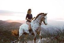 Fotografie // Pferde / Traumhafte Pferdebilder und Ideen für Motive für die eigene Fotografie.