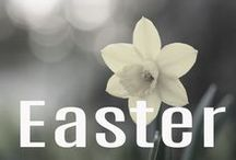 Easter / We are the Easter people and HALLELUJAH is our song! Recipes, ideas, celebrations, Lent activities, and stories of faith fill this board.