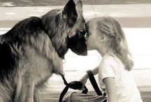 Doggie Love!!!!! / by Connie Fitzgerald
