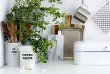 # k i t c h e n / This is where I put my realistic ideas for my kitchen...boring, I know