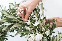 Wreath / Corone