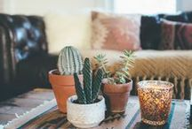 Our New Place / Decor ideas for my new place with my sister. / by Mariah Horonzy