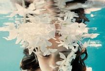 Underwater / by La brújula de historias