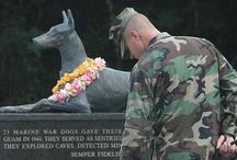 Veterans / by Bubbles Gun