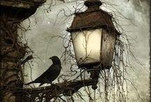 A raven in my heart / by La brújula de historias