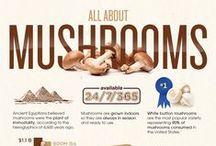 Mainly MUSHROOMS / by Debbie Gaeth Grigsby