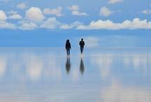 Reflection / by Jennifer Sanchez