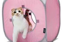 Cachettes et cubes pour chat / Des cubes aire de jeu pour chat et chaton de tout âge.