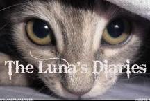 Animals / by Linda Pinczer-Branner
