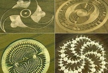 Crop Circles / Regardless of how crop circles are made, they are amazing works of art.