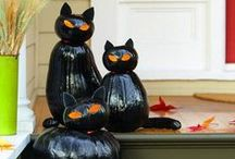 Halloween - Trick or Treat! / Tricks and treats for the Halloween season! Don't forget to check out the Paper Mart website for all your Halloween party needs!