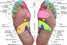 Reflexology / I am a Certified Reflexologist and Reflexology is my favourite treatment to give and receive. There is a lot of misinformation about Reflexology online. I try to share those items that support the instruction that I received during my training.