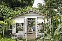 Greenhouses / by Teresa Byrd