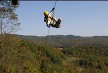 Aerial Adventures / Hold on tight and don't look down.