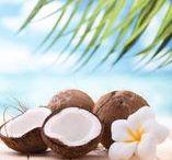 Kokosöl - ein Wunder der Natur