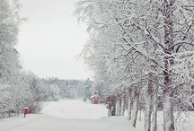 Silent Snow II