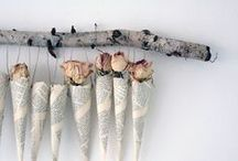 Dried flower is beautiful