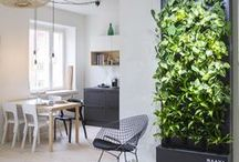 Naava smart green wall at home / Home is the place to relax and revitalize. Naava smart green walls fill your home with invigoratingly fresh forest air.