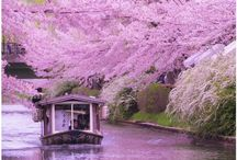 landscape of japan ♡ / 日本は美しい♡