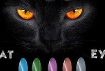 Cat Eye Effect