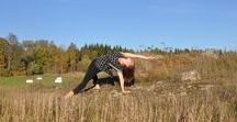 Yoga / Pictures of me doing yoga.