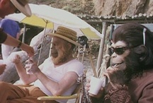 Planet of the Apes / I LOVED these movies as a kid!!!!