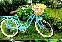 Bike Not Car