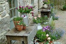 Garden ♥ / beautiful gardens, beautiful flowers, beautiful out door spaces :O)