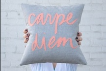 diy pillows / by Rachel Noble