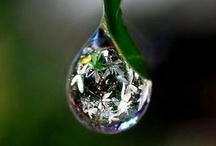 drops / by Atsue Tanaka