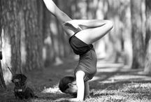 Body, Mind and Muscle / Why must I dance? Why must I breath deep Yoga breaths? Why did God create a physical me? (: / by Counting Each Blessing