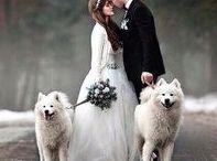 Alaska Wedding / The inspiration for your dream Alaska Wedding!