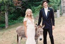Massachusetts Wedding / The inspiration for your dream Massachusetts Wedding!
