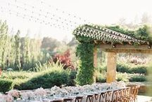 Napa Valley Wedding / The inspiration for your dream Napa Valley Wedding!