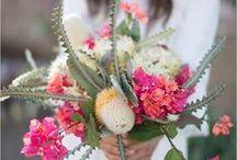 Tucson Wedding / The inspiration for your dream Tucson Wedding!