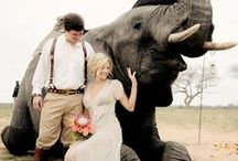South Africa Wedding / The inspiration for your dream South Africa Wedding!