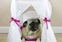Dog Houses / Must Love Dogs #dog #puppy #pet #love #health #care #info