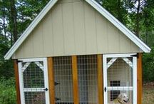 Dog Kennel Ideas / A #kennel located several yards from a human dwelling has the advantage of separating people from #dog noise, dog odor and flies