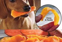 Dogs Food / It is important to check for dog food that contains some meat in it. You can be able to know whether the food has meat in it by reading the nutritional value of the food on the label.