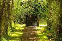 The Secret Garden / by Nichol Wilson