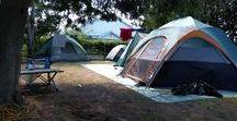 Our Cabins + Campsites
